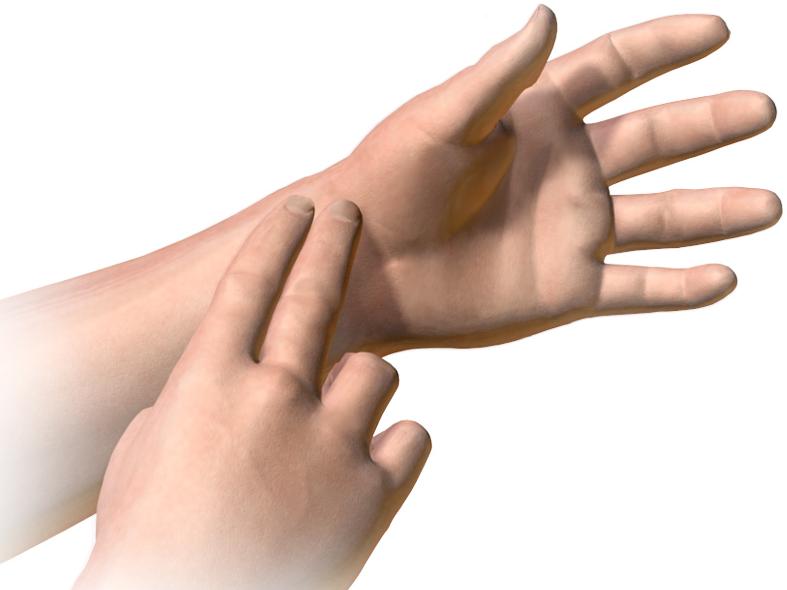 Pulse_(Wrist) 1